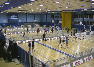 Pabellón Polideportivo multiusos. Real Madrid